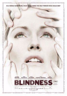 Blindness (2008 film)